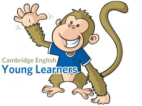 monkey cambridge gijón inglés young learners